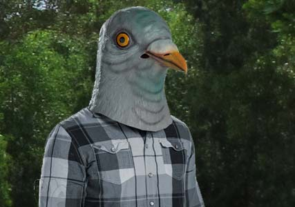 pigeon head mask