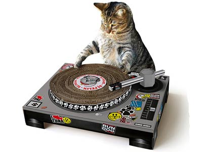 cat turntables