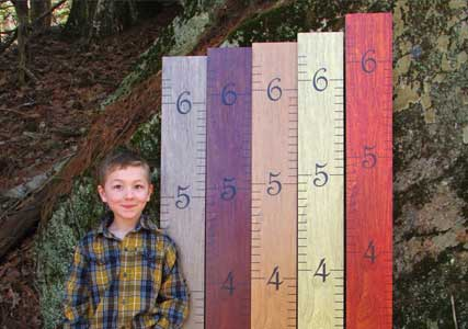 kids groth ruler wood
