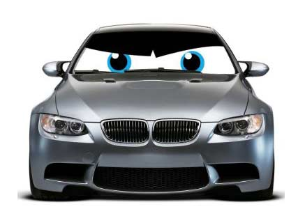 car sunshade eyes