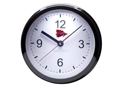 fish tank wall clock